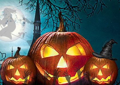 Halloween Zombie Maze on FOX 11 News!